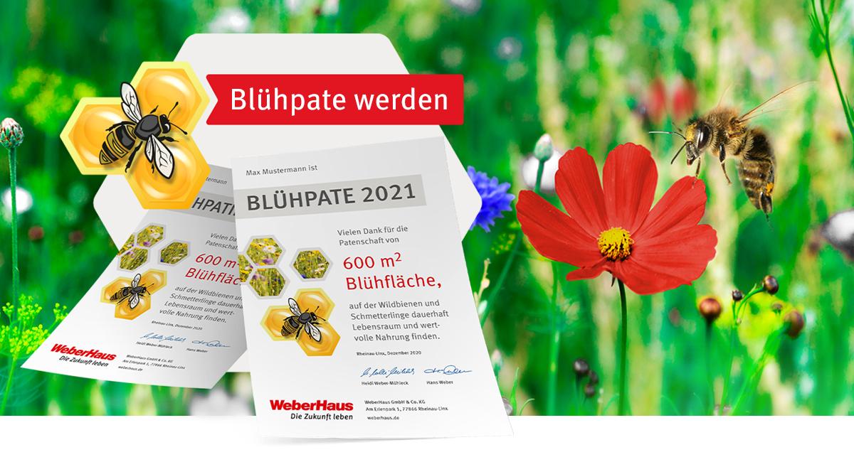 Blühpate werden - WeberHaus Blühstreifen-Initiative